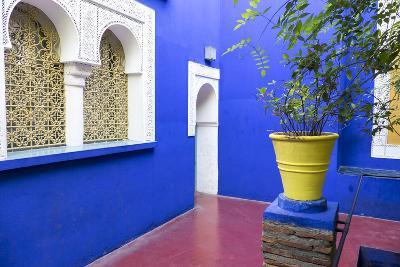 Morocco, Marrakech, Potted Garden Courtyard-Emily Wilson-Photographic Print