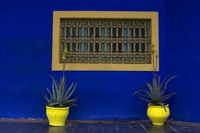 https://imgc.artprintimages.com/img/print/morocco-marrakech-yves-saint-laurent-s-jardin-majorelle_u-l-q12t8ma0.jpg?p=0