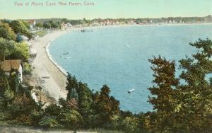 Morris Cover, New Haven, Connecticut
