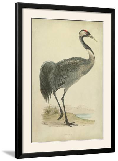 Morris Crane I--Framed Photographic Print