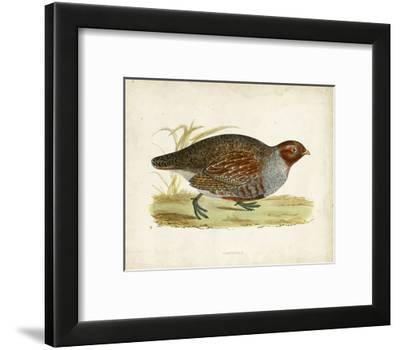 Morris Pheasants I--Framed Art Print