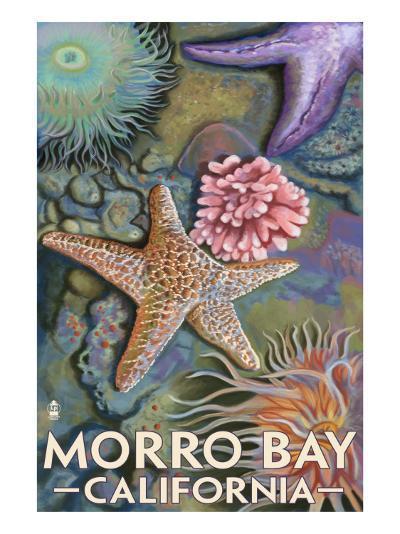 Morro Bay, CA - Tidepool-Lantern Press-Art Print