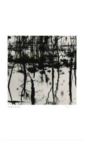 Untitled (trees reflecting)
