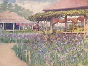 'An Iris Garden', 1903 by Mortimer L Menpes