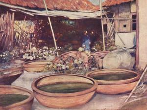 'Nursery Garden', 1903 by Mortimer L Menpes