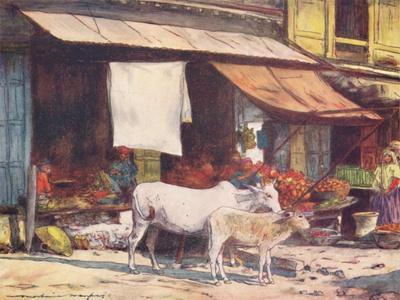 'A Corner of the Fruit Market, Delhi', 1905