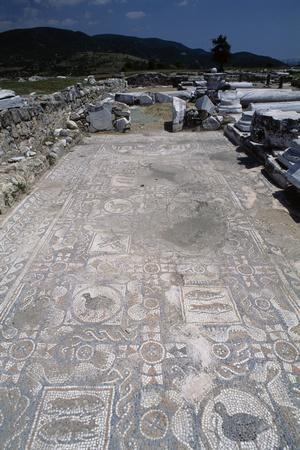 https://imgc.artprintimages.com/img/print/mosaic-floor-in-the-basilica-of-amphipolis-greece_u-l-pox7hh0.jpg?p=0