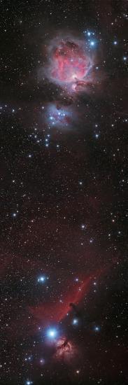 Mosaic of Orion Nebula and Horsehead Nebula--Photographic Print