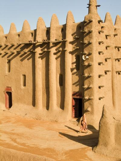 Mosque at Djenne, the largest mud-brick building in the world, Mali, West Africa-Janis Miglavs-Photographic Print