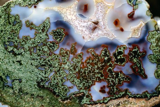 Moss Agate-Dirk Wiersma-Photographic Print