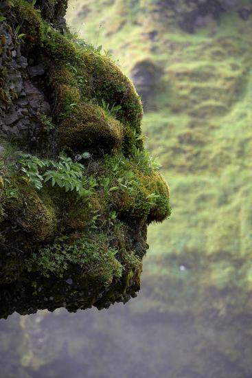 Moss Covered Rock Shaped Like a Face by Skogarfoss Waterfalls, Iceland--Photographic Print