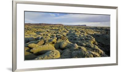 Moss Cushion on a Lava Field, Near Kirkjubaerklaustur, Eldhraun, South Iceland, Iceland-Rainer Mirau-Framed Photographic Print