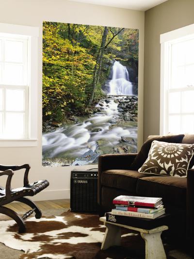 Moss Glen Falls in Autumn, Granvillie, Vermont, USA-Adam Jones-Wall Mural