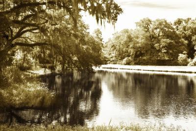 Mossy Lake I-Alan Hausenflock-Photographic Print