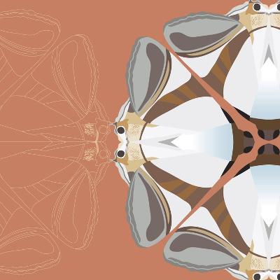 Moth Meditation-Belen Mena-Giclee Print