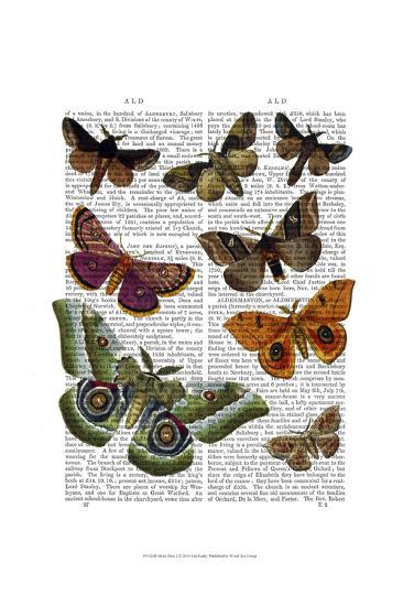 Moth Plate 2-Fab Funky-Art Print