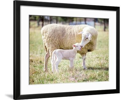 Mother and Son 2-pelooyen-Framed Photographic Print