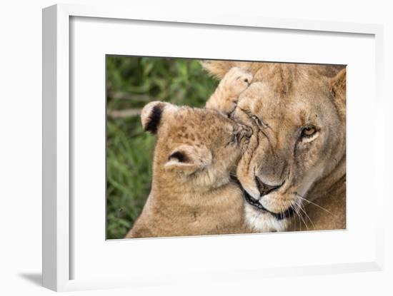 Mother Love-Alessandro Catta-Framed Giclee Print