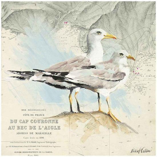 Mouettes Cap Couronne-Pascal Cessou-Art Print