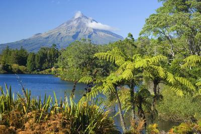 Mount Egmont Lake, Tree Ferns and Perfectly Cone-Shaped--Photographic Print