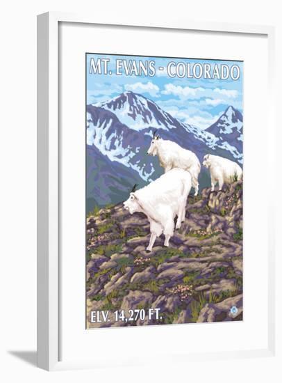 Mount Evans, Colorado, Mountain Goat Family-Lantern Press-Framed Art Print