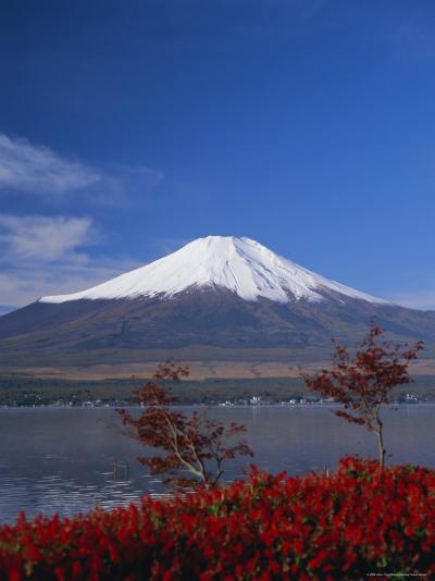 Mount Fuji, Honshu, Japan, Asia-Adina Tovy-Photographic Print