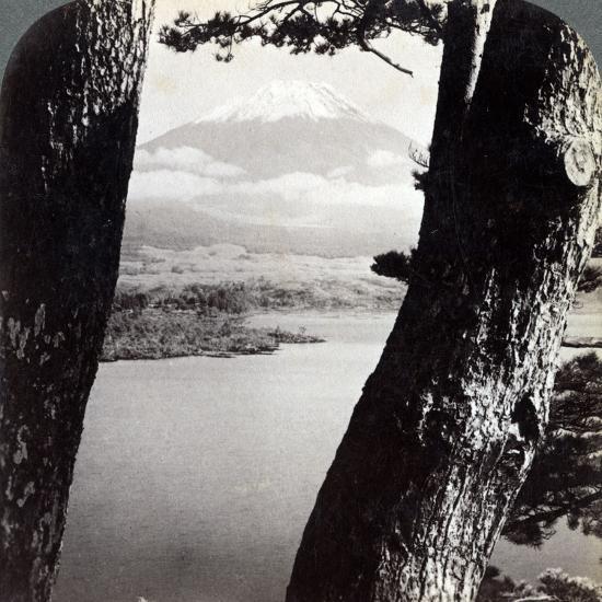 Mount Fuji, Seen from the Northwest, Through Pines at Lake Motosu, Japan, 1904-Underwood & Underwood-Photographic Print