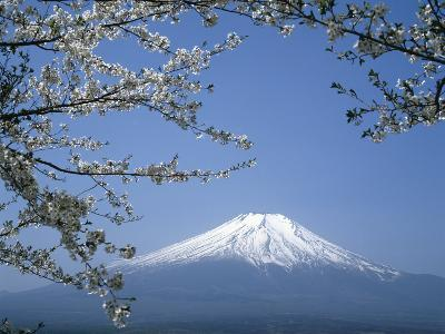 Mount Fuji--Photographic Print