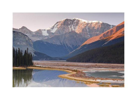Mount Kitchener Reflection-Donald Paulson-Giclee Print