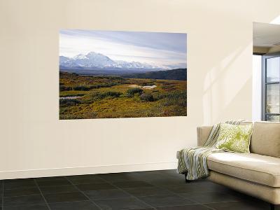 Mount Mckinley, Denali National Park, Mckinley River From Near Wonder Lake, Alaska, USA-Bernard Friel-Wall Mural