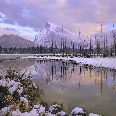 Mount Rundle and Tunnel Mountain, Banff National Park, Alberta, Canada-Tim Fitzharris-Photographic Print