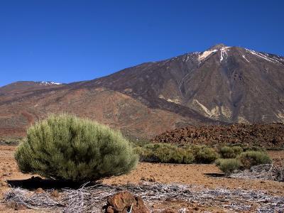 Mount Teide, Parque Nacional De Las Canadas Del Teide Tenerife, Canary Islands-White Gary-Photographic Print