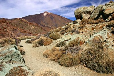 Mount Teide, Parque Nacional Del Teide, Tenerife, Canary Islands, 2007-Peter Thompson-Photographic Print