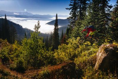 https://imgc.artprintimages.com/img/print/mountain-biker-descends-the-fuzzy-bunny-trail-on-teton-pass-near-wilson-wyoming_u-l-q19mybn0.jpg?p=0