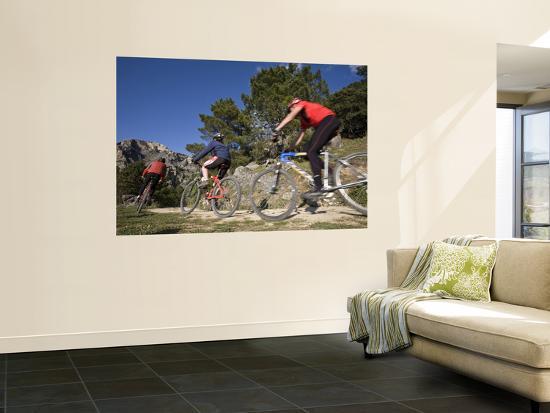 Mountain Bikers-Diego Lezama-Wall Mural