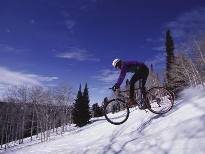 Mountain Biking on Snow--Photographic Print