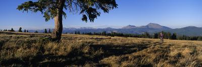 Mountain Biking on the Colorado Trail-Bill Hatcher-Photographic Print