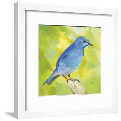 Mountain Bird-Sarah Simpson-Framed Art Print