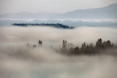 Mountain Fog- vchornyy-Photographic Print