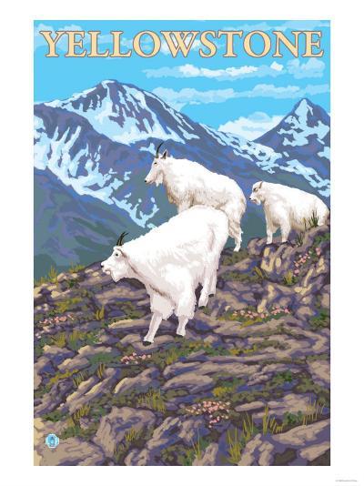 Mountain Goats Scene, Yellowstone National Park-Lantern Press-Art Print
