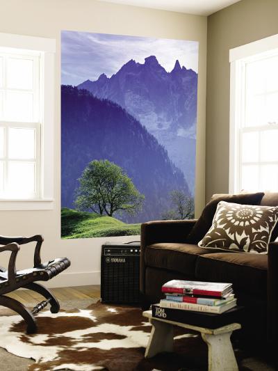 Mountain Landscape, Switzerland-Peter Adams-Wall Mural