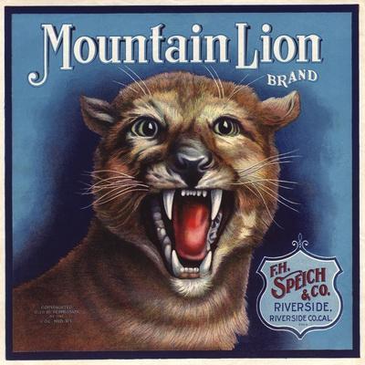 https://imgc.artprintimages.com/img/print/mountain-lion-brand-riverside-california-citrus-crate-label_u-l-q1grgwz0.jpg?p=0