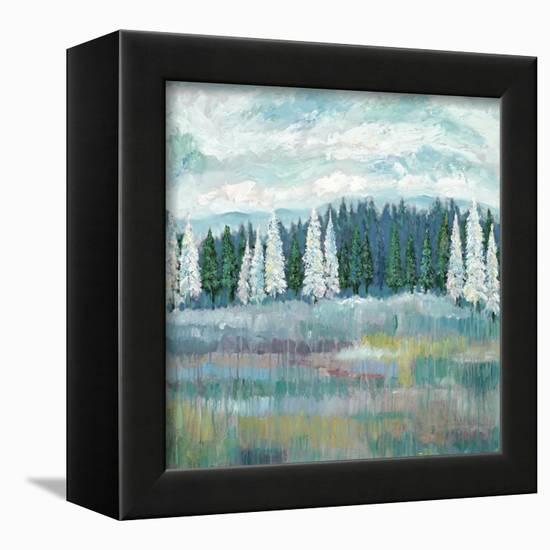 Mountain Meadow Colors-James Zheng-Framed Stretched Canvas
