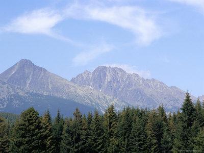 https://imgc.artprintimages.com/img/print/mountain-pines-vysoke-tatry-mountains-vysoke-tatry-slovakia_u-l-p1nyya0.jpg?p=0
