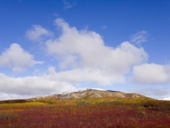 Mountain Range in Tundra Landscape-John Eastcott & Yva Momatiuk-Photographic Print