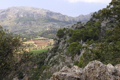 Mountain Scenery Near Lluc, Mallorca-Peter Thompson-Photographic Print