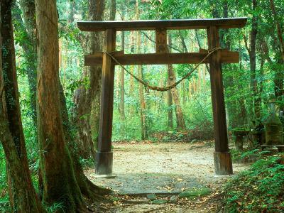 Mountain Shrine, Yakushima, Kagoshima, Japan-Rob Tilley-Photographic Print