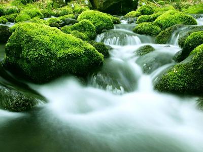 Mountain Stream--Photographic Print