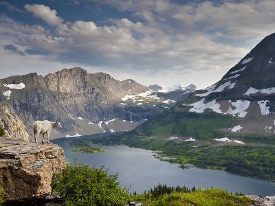 Mountain View and Hidden Lake Along Hidden Lake Trail, Glacier National Park, Montana-Ian Shive-Photographic Print