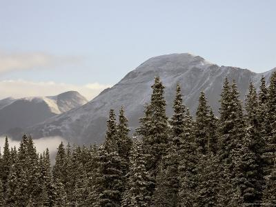 Mountains and Evergreens with Snow, Near Ouray, Colorado, United States of America, North America-James Hager-Photographic Print
